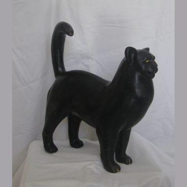 Maltese Kitten